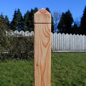 Larch post 70 x 70  x 2.4